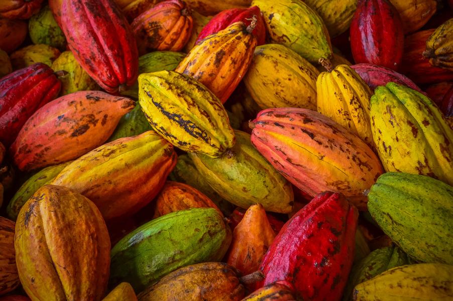 Какао-порошок Cargill
